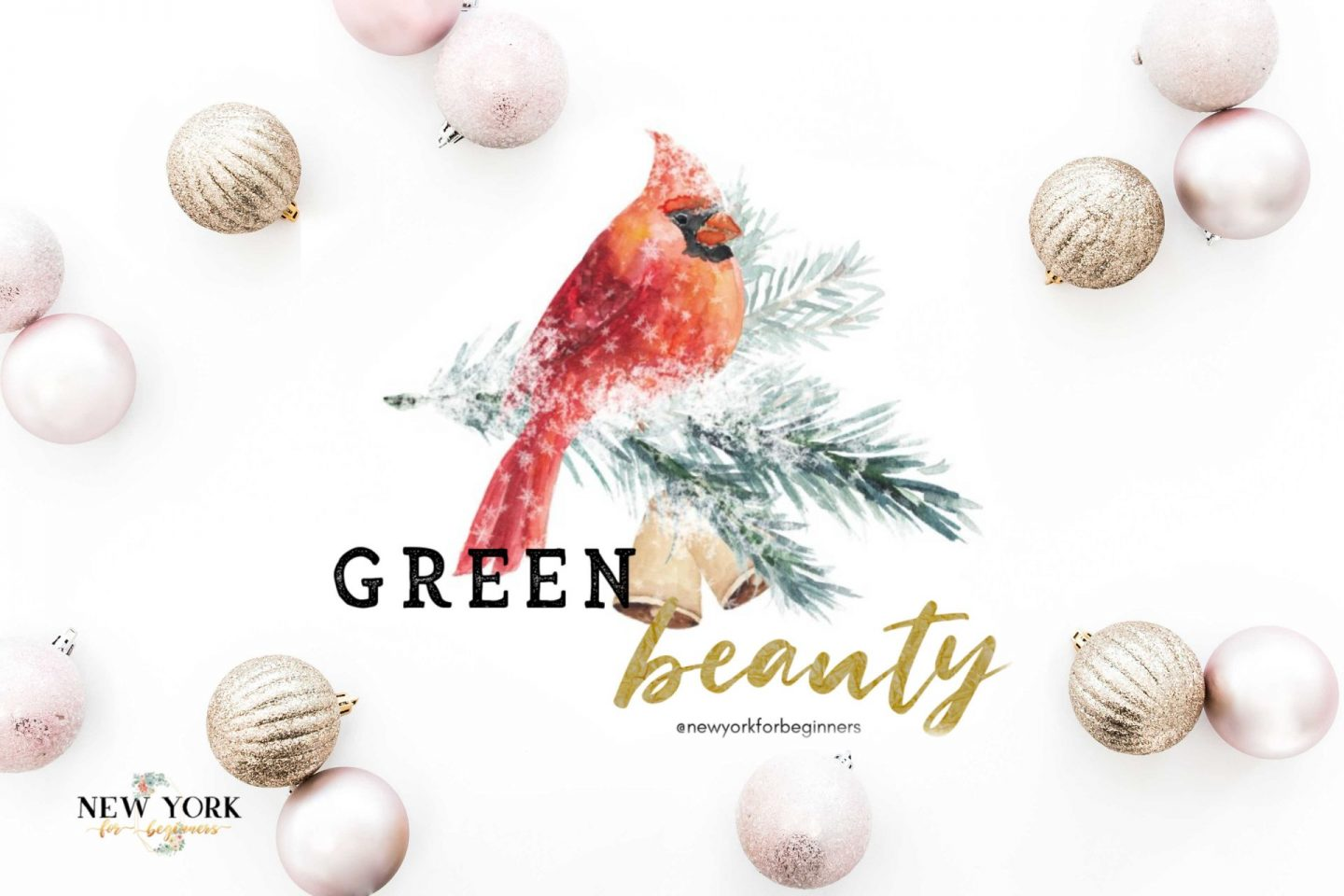 green beauty gift guide