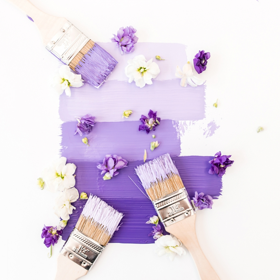 purple paint decorated with flower petals